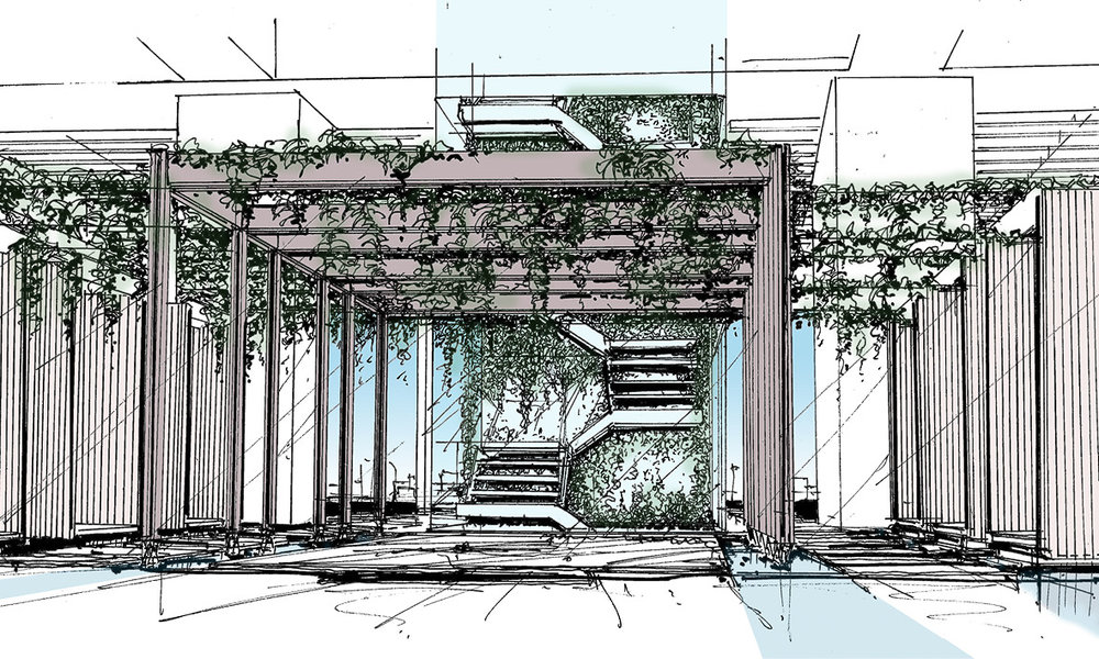 This concept sketch visualises the water-garden and glass staircase between the pool deck level and spa and library level. Trellice and climbers shade the space from the desert sun.