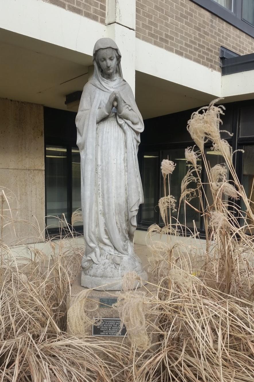 Extraordinary Mary