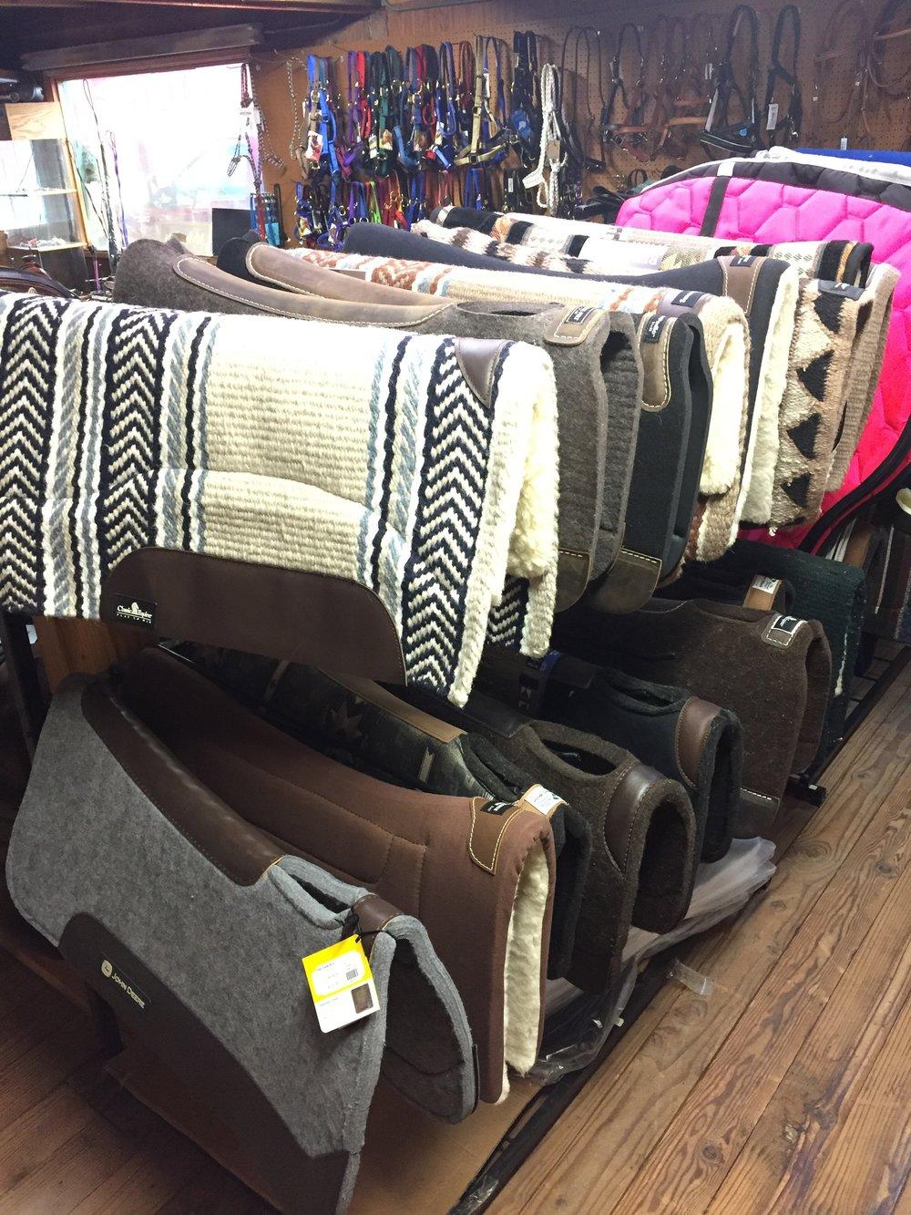 Western pads.JPG