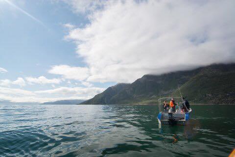 korsfjorden båtbilde 1.jpg