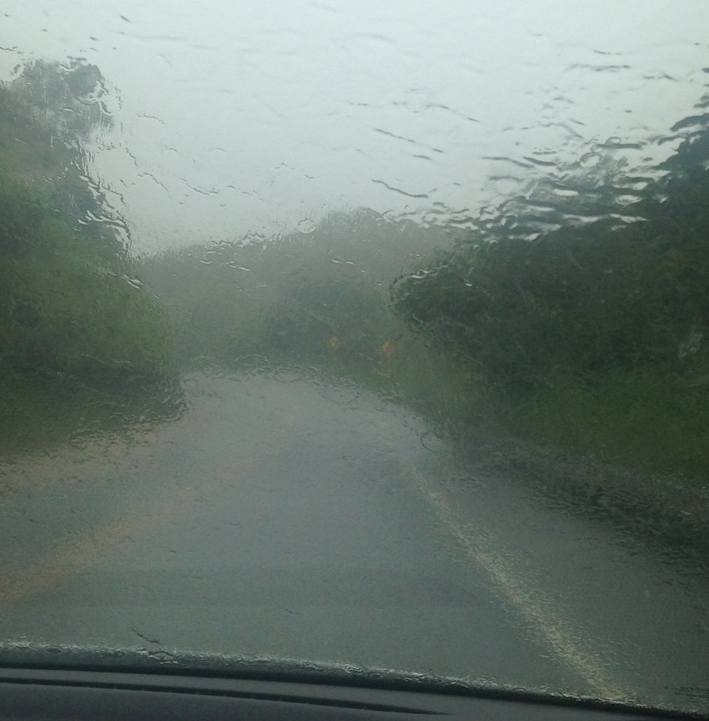 So. Much. Rain. On the road to Hana.