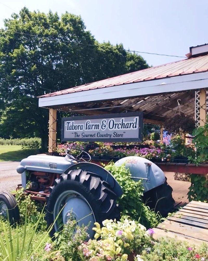 tabora farm & orchard