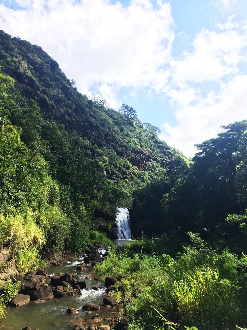 Waimea Falls waterfall