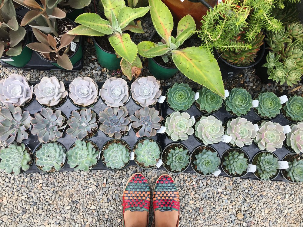 Multi-colored Huarache Shoes
