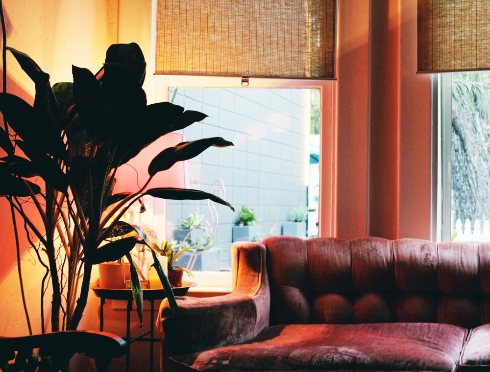 Cozy Nook at Flamingo House Social Club equipped with a pink velvet couch and pink table lamp