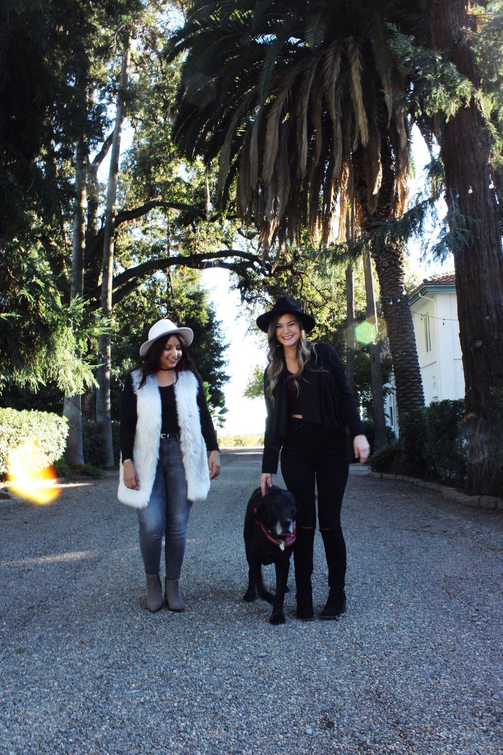 Black lab Lodi California winery white fur jacket black wide brim fedora