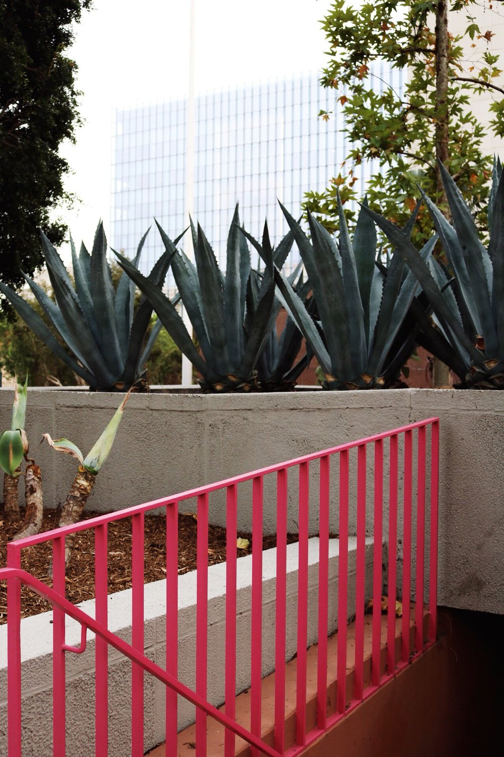 Pink details at Grand Park in Downtown Los Angeles