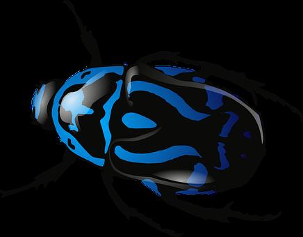 beetle-ea31b2082a_340.png