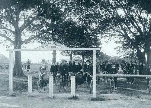 Cyclists' Avenue, Centennial Park, 20 September 1900.