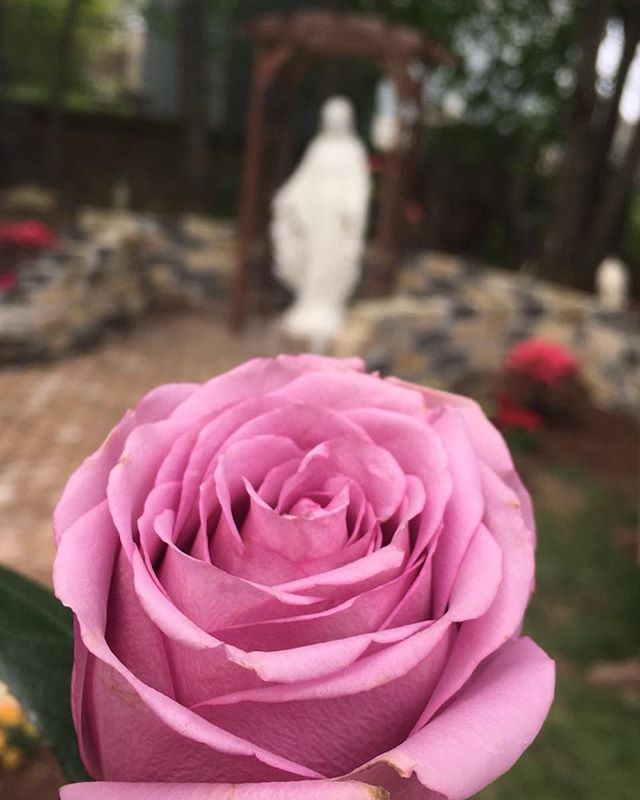 """The loveliest masterpiece of the Heart of God is the heart of a mother."" -St. Therese of Lisieux . . To all the mothers in our lives,  your heart is a treasure!  We love you . . 📷: @ohchelsearojas  #happymothersday #amothersheart #happyfeast #ourladyoffatima #catholic #blog #women #unwrittenblog"