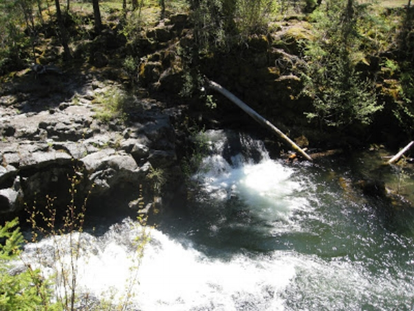 NATURAL BRIDGE - Prospect - What to do in Southern Oregon - Kid-Friendly - Hiking - Family - Things to do