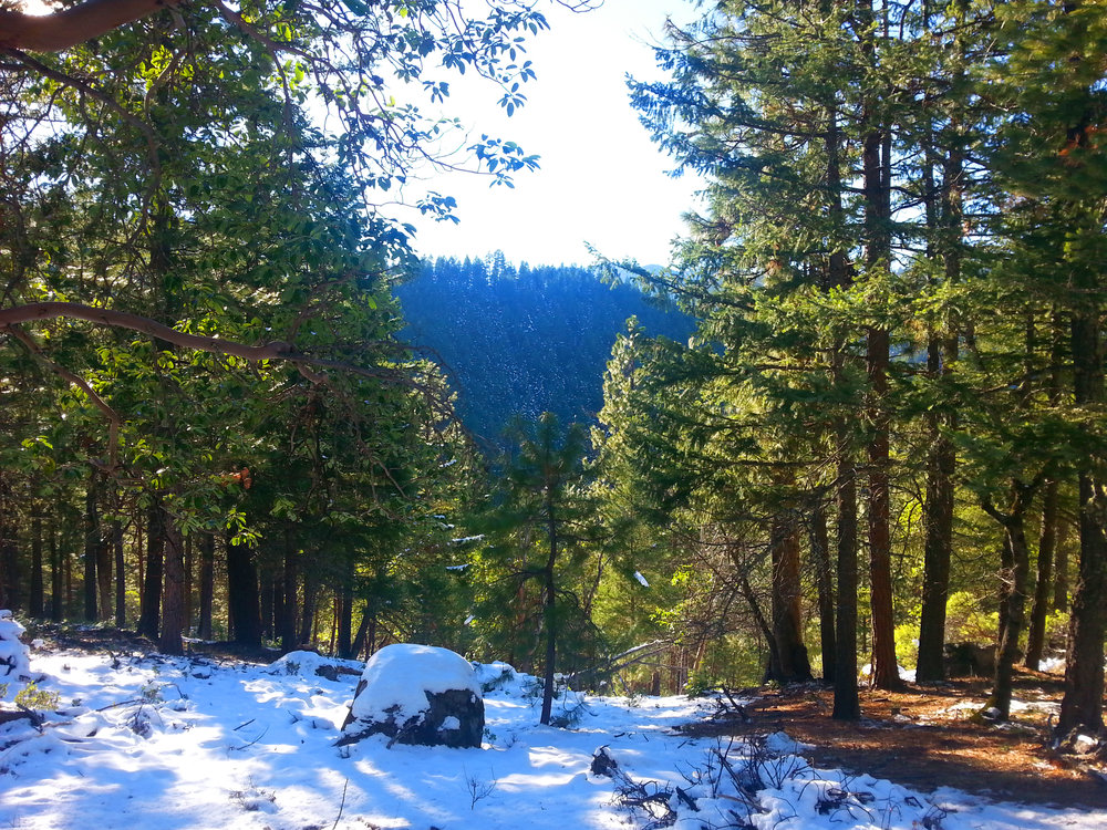 HIKING WHITE RABBIT TRAIL - Ashland - What to do in Southern Oregon - Things to do with Kids