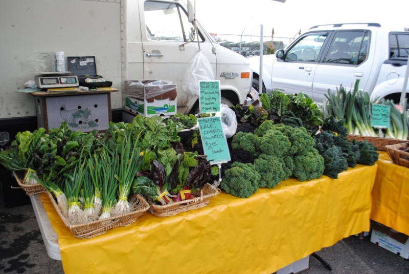 ROGUE VALLEY GROWER'S MARKET - What to do in Southern Oregon - Things to do in Medford and Ashland with the Kids - Events Calendar