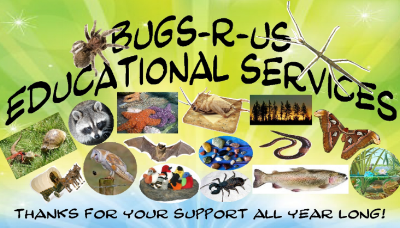 BUGS R US - What to do in Southern Oregon Birhtday Parties - Things to do in Medford