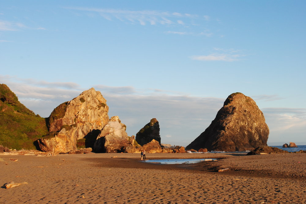 Brookings, Oregon - Curry County - Southern Oregon Coast (447).JPG