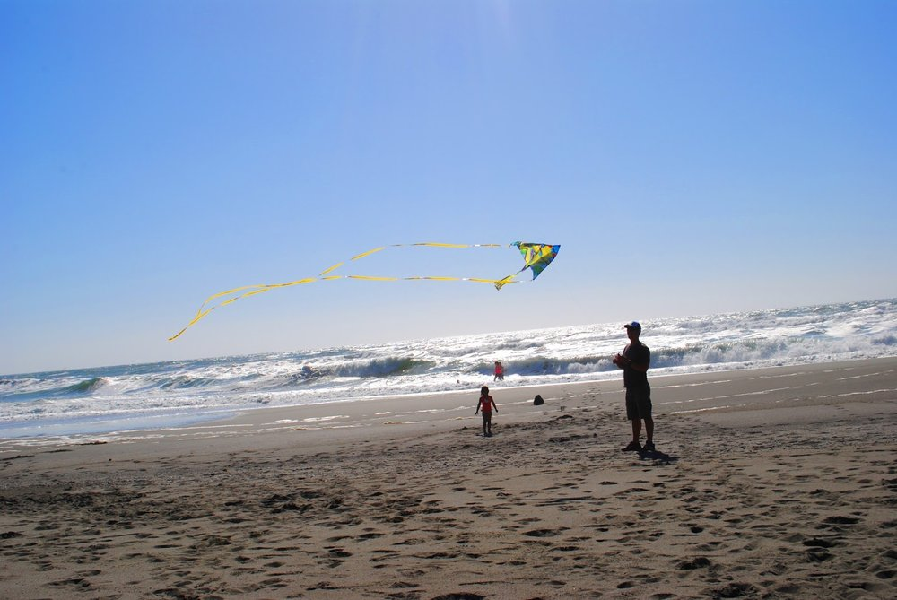 GOLD BLUFFS BEACH - What to do in Southern Oregon - Things to do - Norhtern California - Camping - Day TRip - Kid-Friendly - Beaches