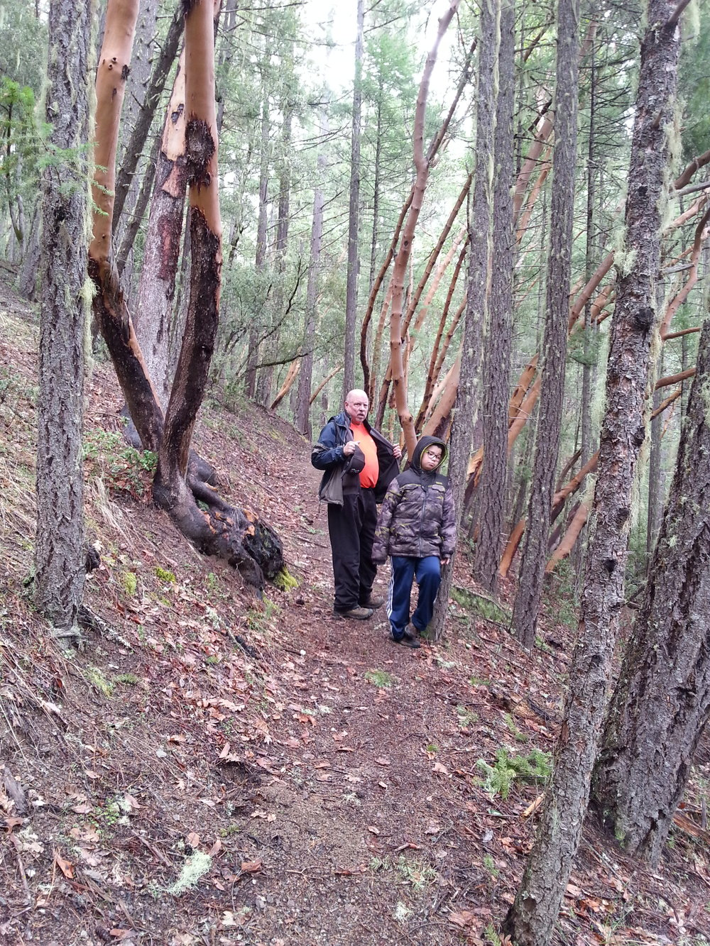 GROUSE LOOP TRAIL - What to do in Southern Oregon - Things to do - Hiking - Kids - Applegate - Jacksonville