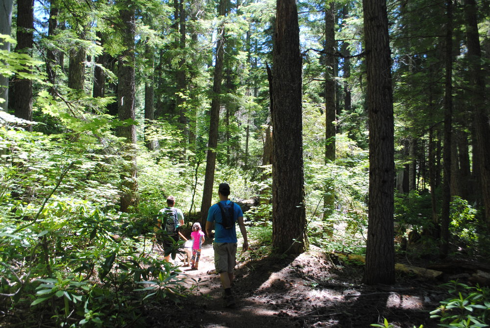 FOUR WATERFALLS, ONE DAY - HIKING ADVENTURES WITH KIDS - What to do in Southern Oregon - Things to do - Douglas County - Warm Spring Falls