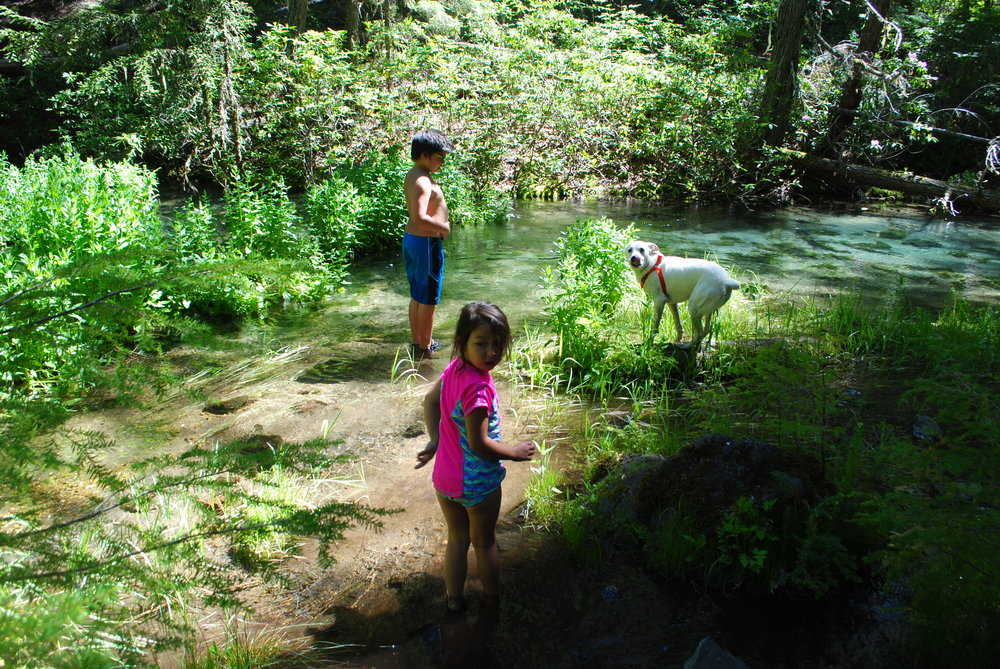 FOUR WATERFALLS, ONE DAY - HIKING ADVENTURES WITH KIDS - What to do in Southern Oregon - Things to do - Douglas County - Clearwater Falls - Clearwater River