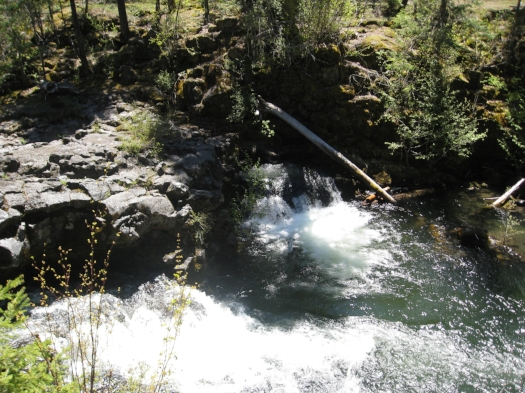 NATURAL BRIDGE - 17 SOUTHERN OREGON ADVENTURES YOU DO NOT WANT TO MISS - What to do in Southern Oregon - Kids
