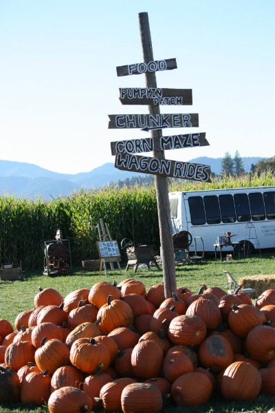 FORT VANNOY FARM - Pumpkin Patch - Harvest Festival - Grants Pass - What to do in Southern Oregon - Kids - Fall