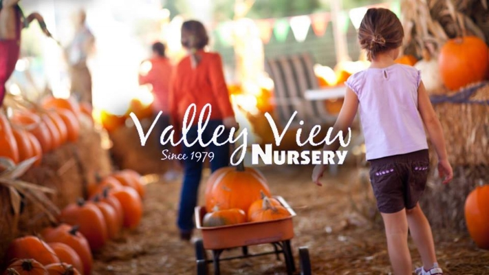 Valley View Nursery Pumpkin Patch - Ashland, Oregon - Jackson County - Rogue Valley - Southern Oregon.jpg