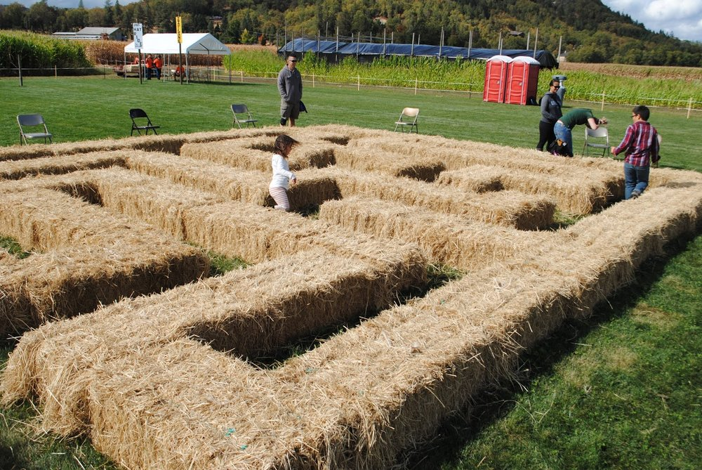 Fort Vannoy Farms Harvest Festival - Grants Pass, Oregon - Josephine County - Rogue Valley - Southern Oregon - Fall - Autumn - Pumpkin Patch - Corn Maze - Hayrides  - What to do in Southern Oregon