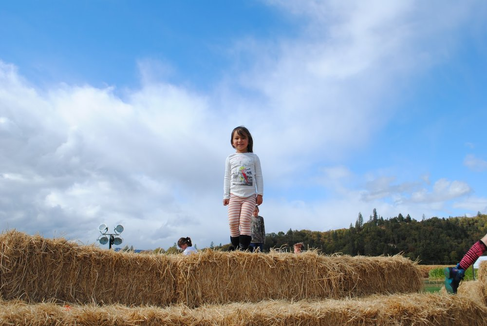 Fort Vannoy Farms Harvest Festival - Grants Pass, Oregon - Josephine County - Rogue Valley - Southern Oregon - Fall - Autumn - Pumpkin Patch - Corn Maze - Hayrides