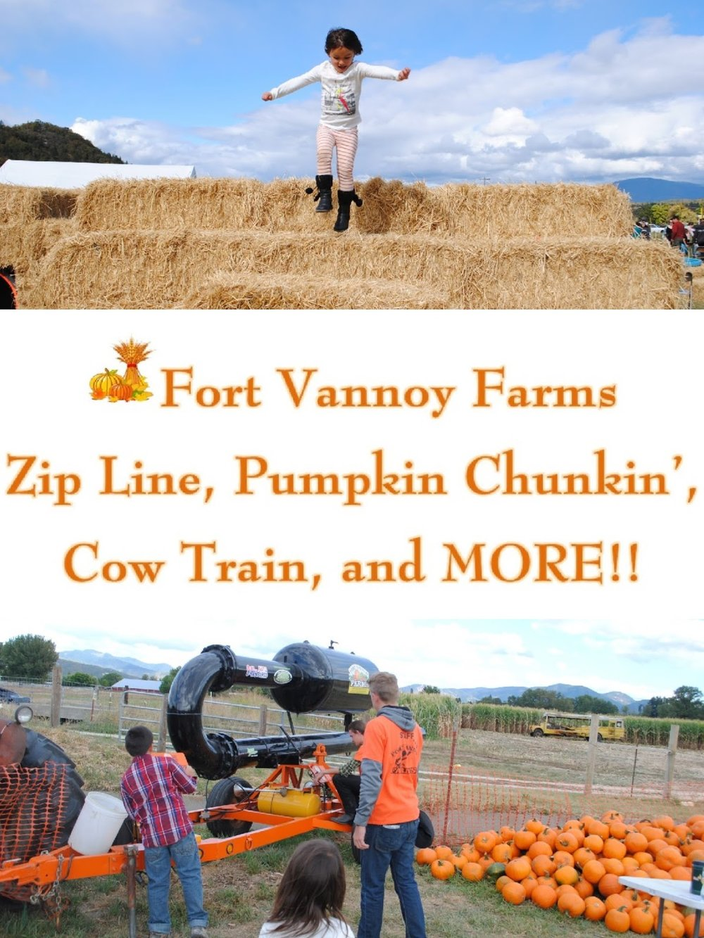 Fort Vannoy Farms Collage.jpeg