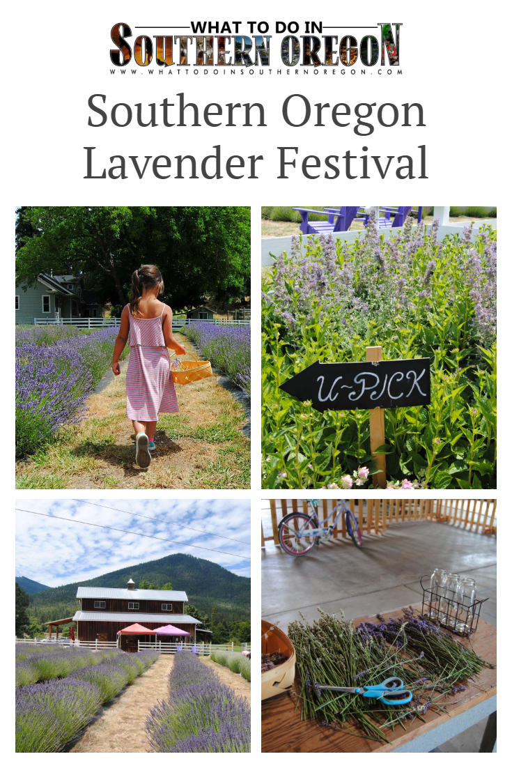 SOUTHERN OREGON LAVENDER FESTIVAL - WHAT TO DO IN SOUTHERN OREGON