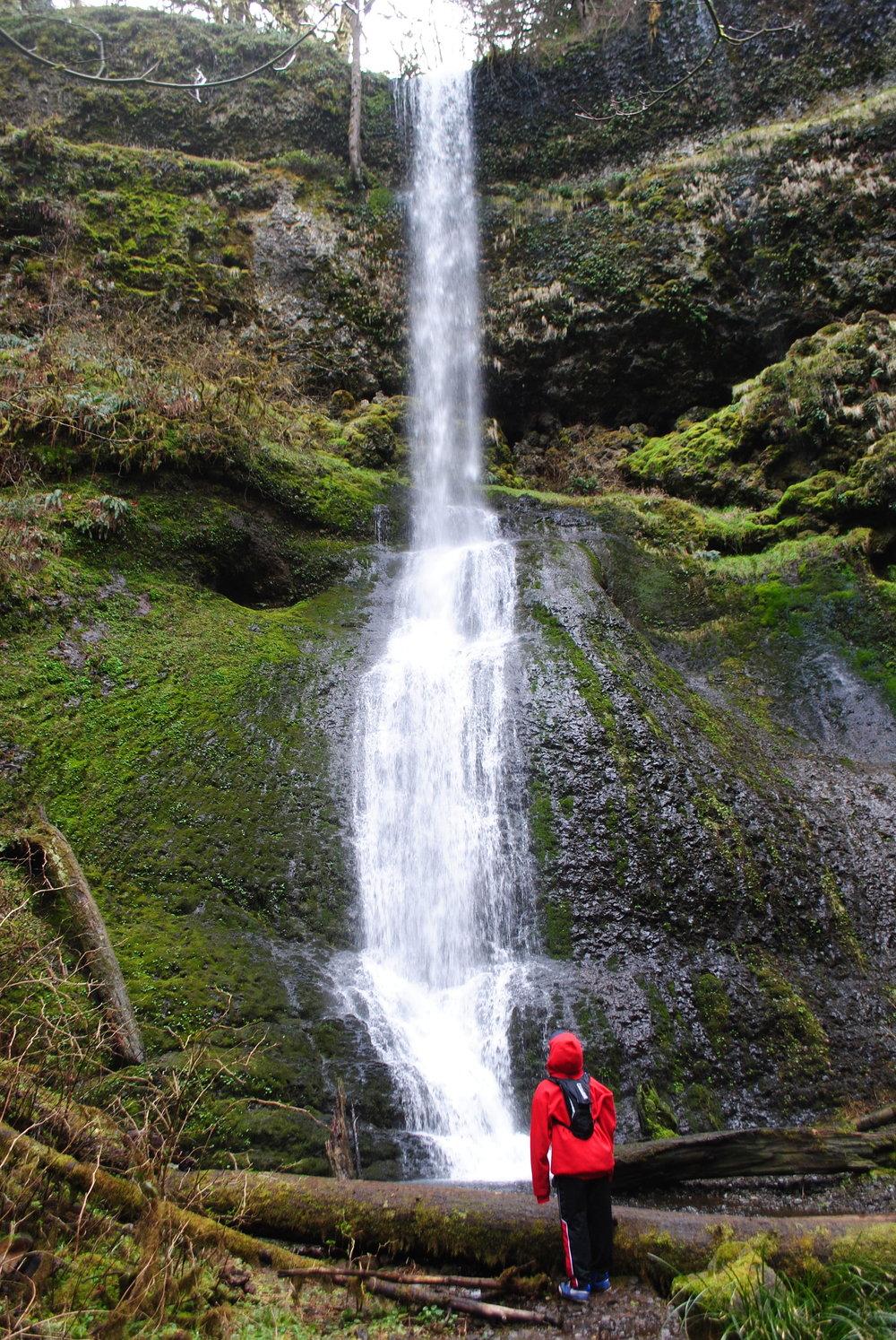 SILVER FALLS STATE PARK - Winter Falls - Oregon