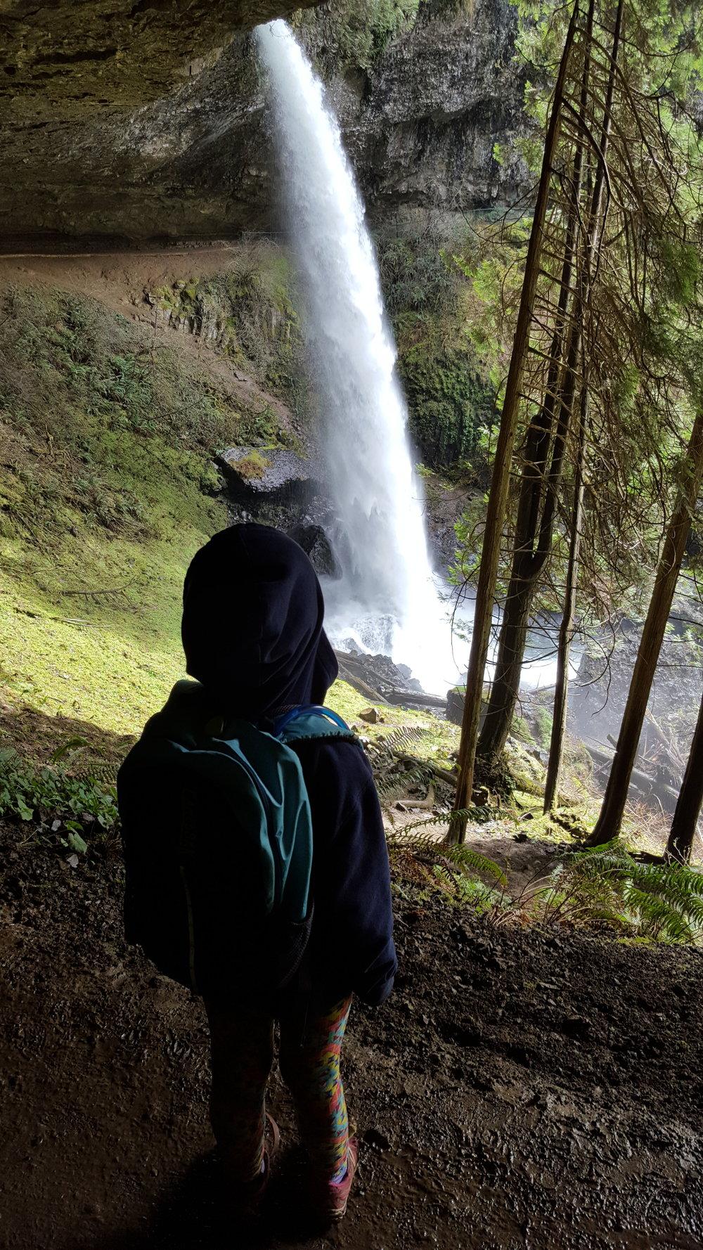 SILVER FALLS STATE PARK - North Falls - Oregon