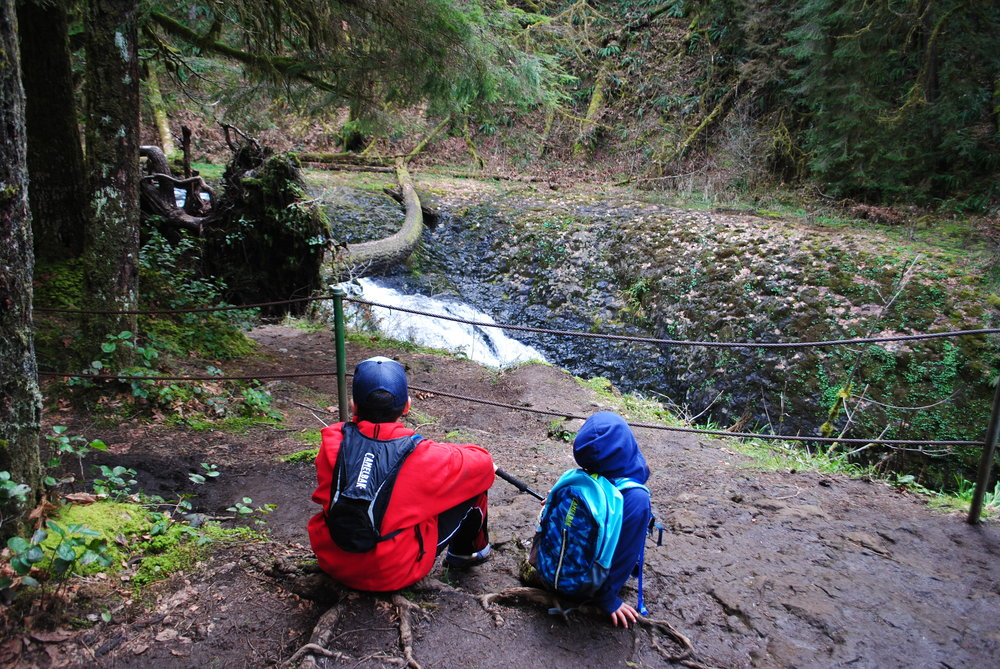 SILVER FALLS STATE PARK - What to do in Southern Oregon - Waterfalls - Travel Oregon - Kid-Friendly