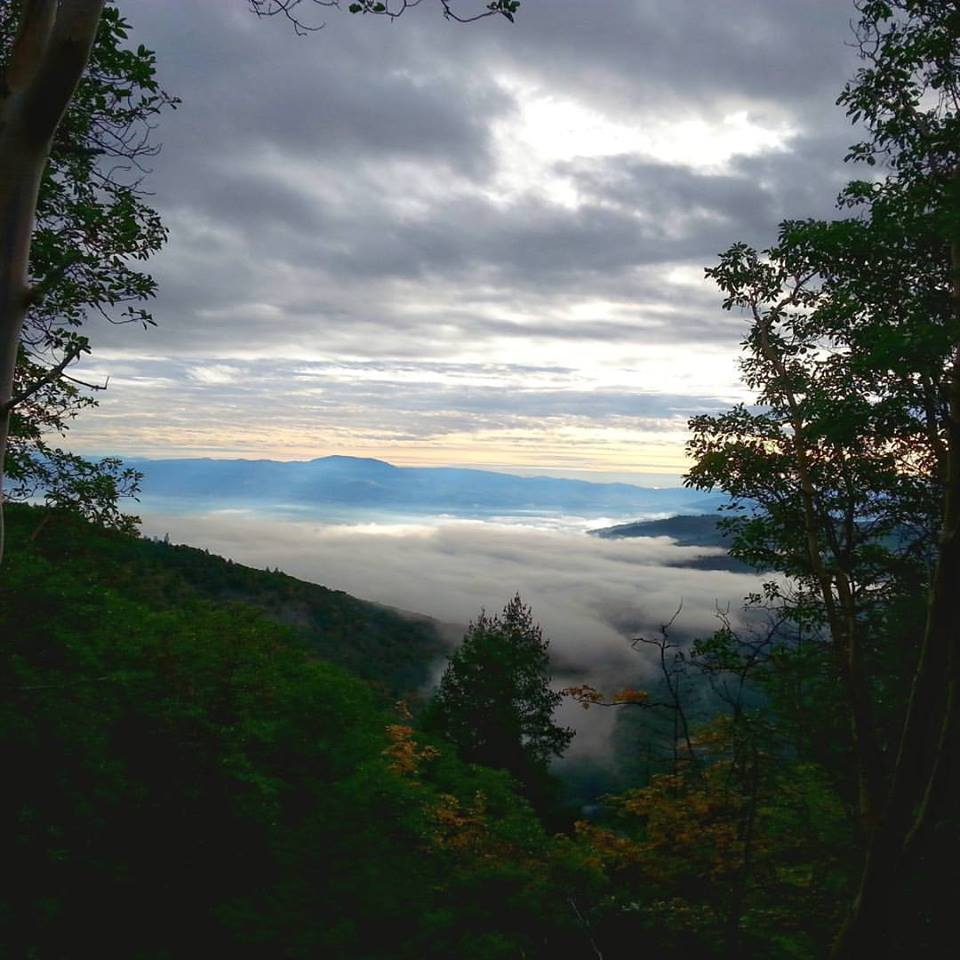 Forest Park - Atsahu Trail - Jacksonville, Oregon- Hiking - What to do in Southern Oregon