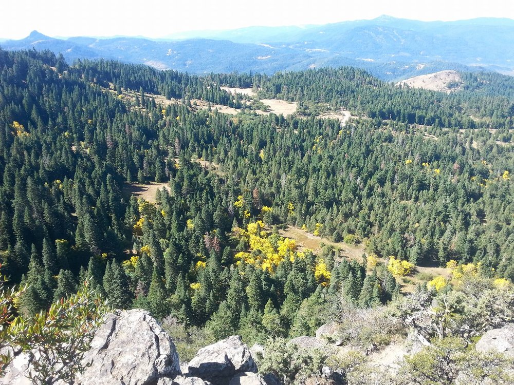 Hobart Bluff - Ashland, Oregon - Hiking - What to do in Southern Oregon