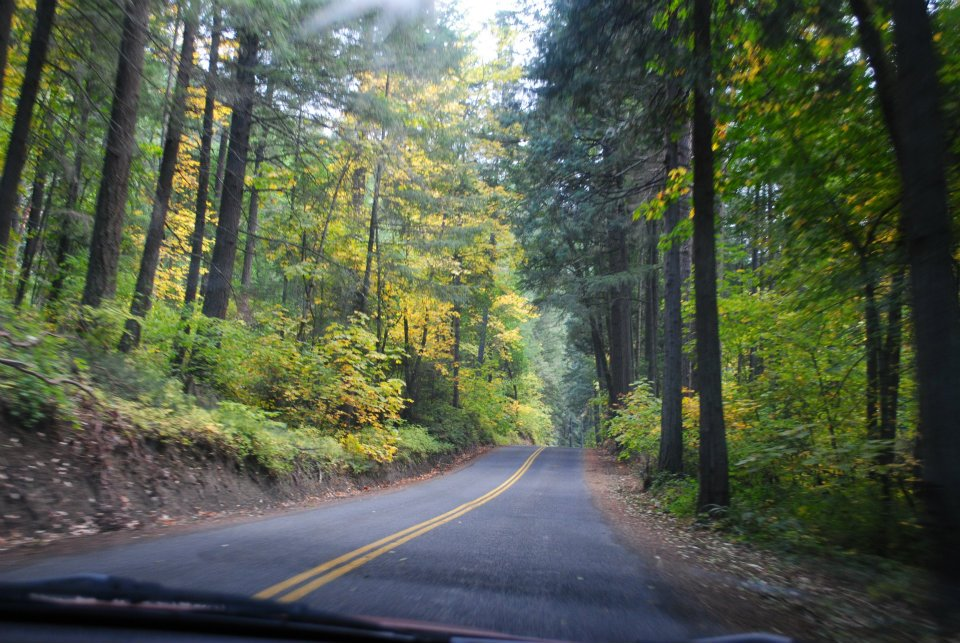 Wagner Butte - Talent, Oregon- Hiking - What to do in Southern Oregon