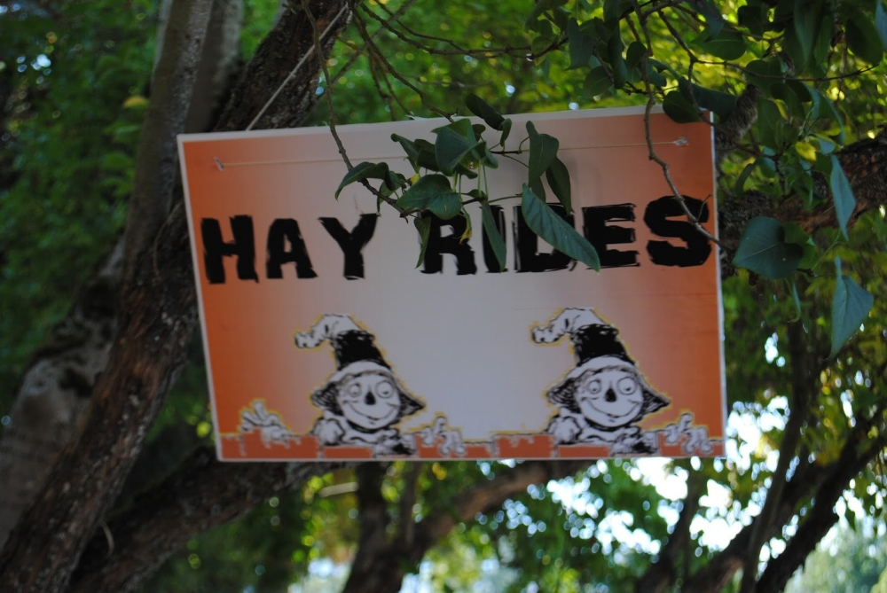 Hanley Farm - Scarecrow Festival - Fall - What to do in Southern Oregon