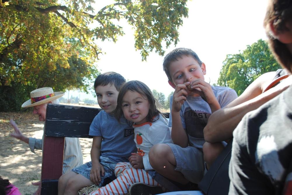 10 October 17th Scarecrow Festival at Hanley Farm (118).JPG