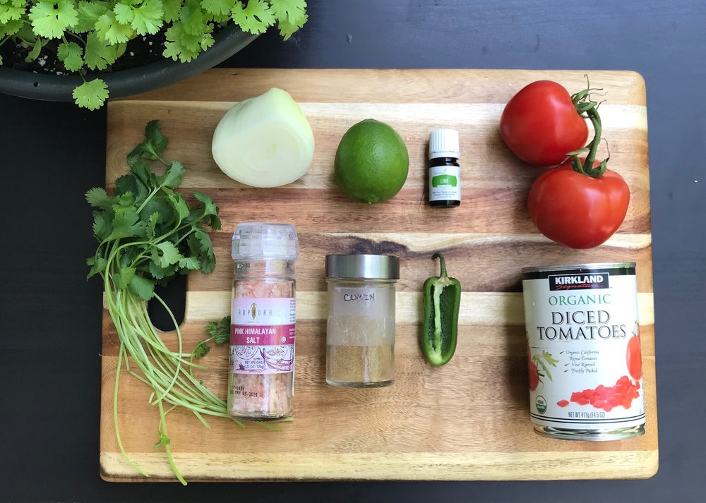 salsa ing-png.png