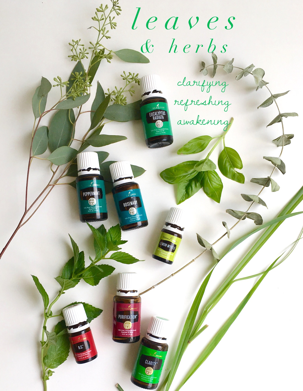Peppermint, Rosemary, Eucalyptus, Lemon Myrtle are all wonderful herb-oils. Purification, R.C. and Clarity are blends.