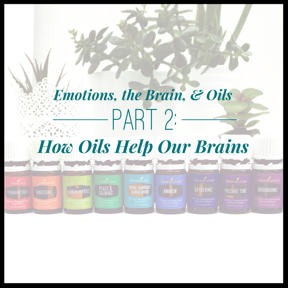 brain-oils2.PNG