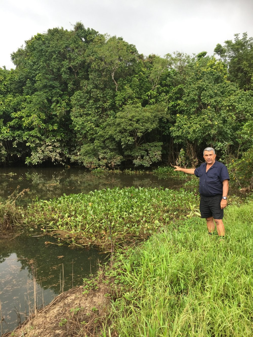 Lenny Parisi is building lagoons on his property to help improve water quality flowing to the Great Barrier Reef.