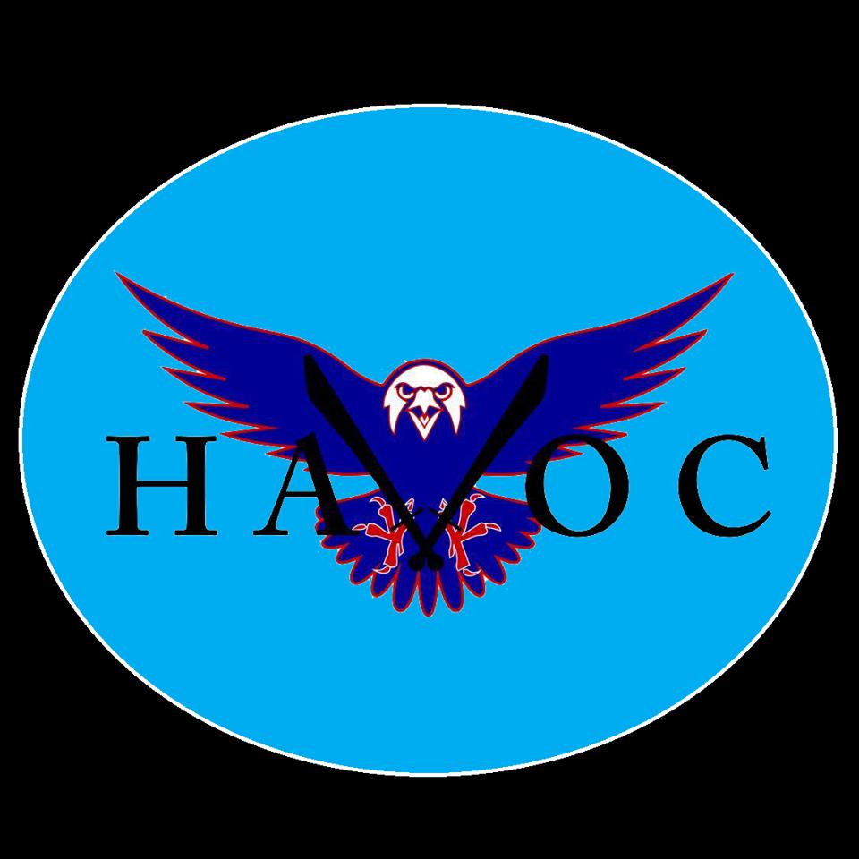 team havoc image.png