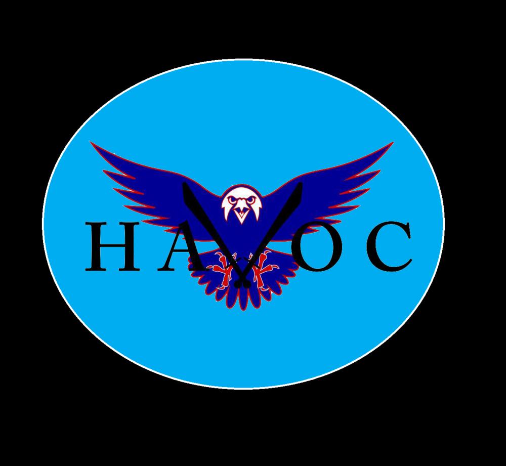 NSW TEAM HAVOC