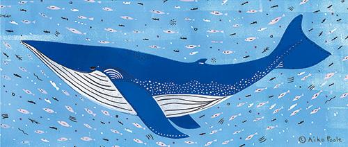 summerwhale-b.jpg