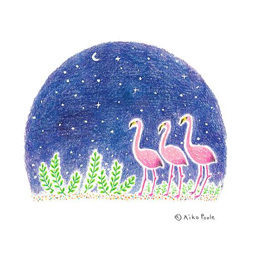 flamingoes-b.jpg