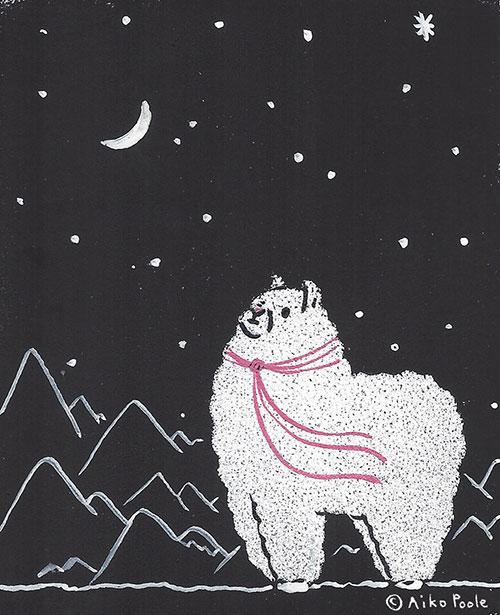 alpaca-b.jpg
