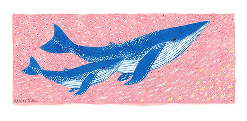 springwhale-b.jpg