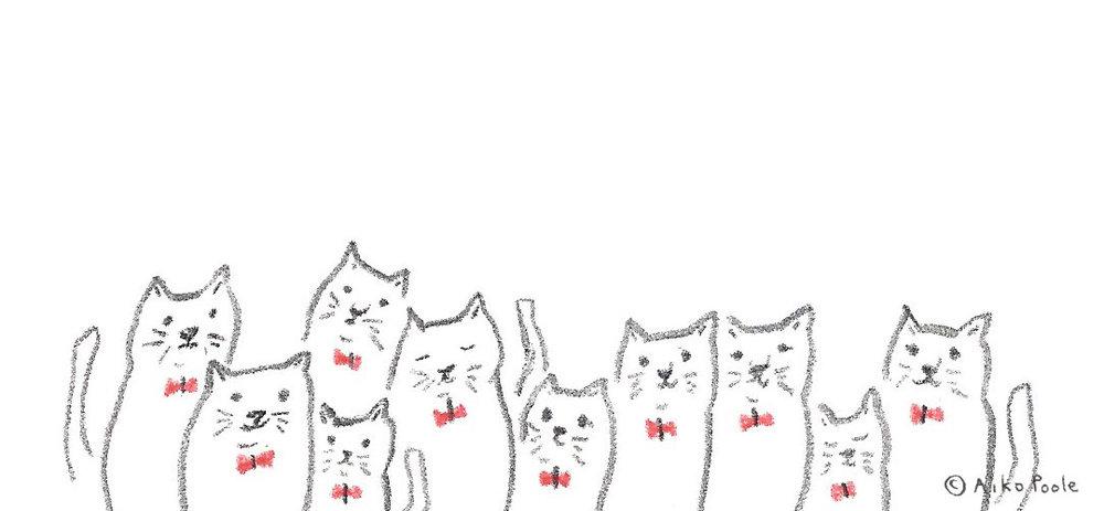 nekonohi-b.jpg