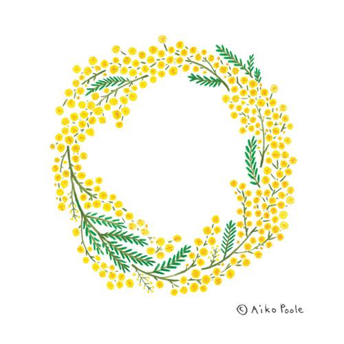 _mimosa-b.jpg